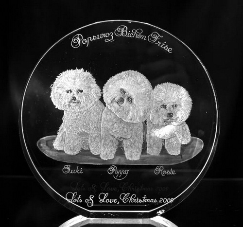 Optical Crystal Circle with a trio of Bichon Frise
