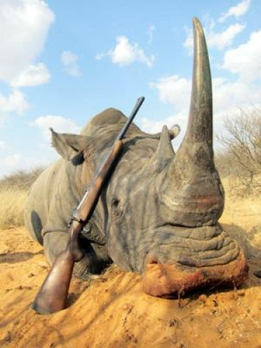 550 Magnum With Rhino