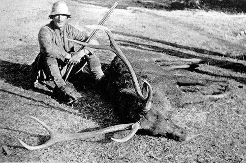 Major-General A E Wardrop with a sambar deer