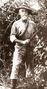 Arthur H Neumann