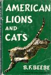 American Lions And Cats