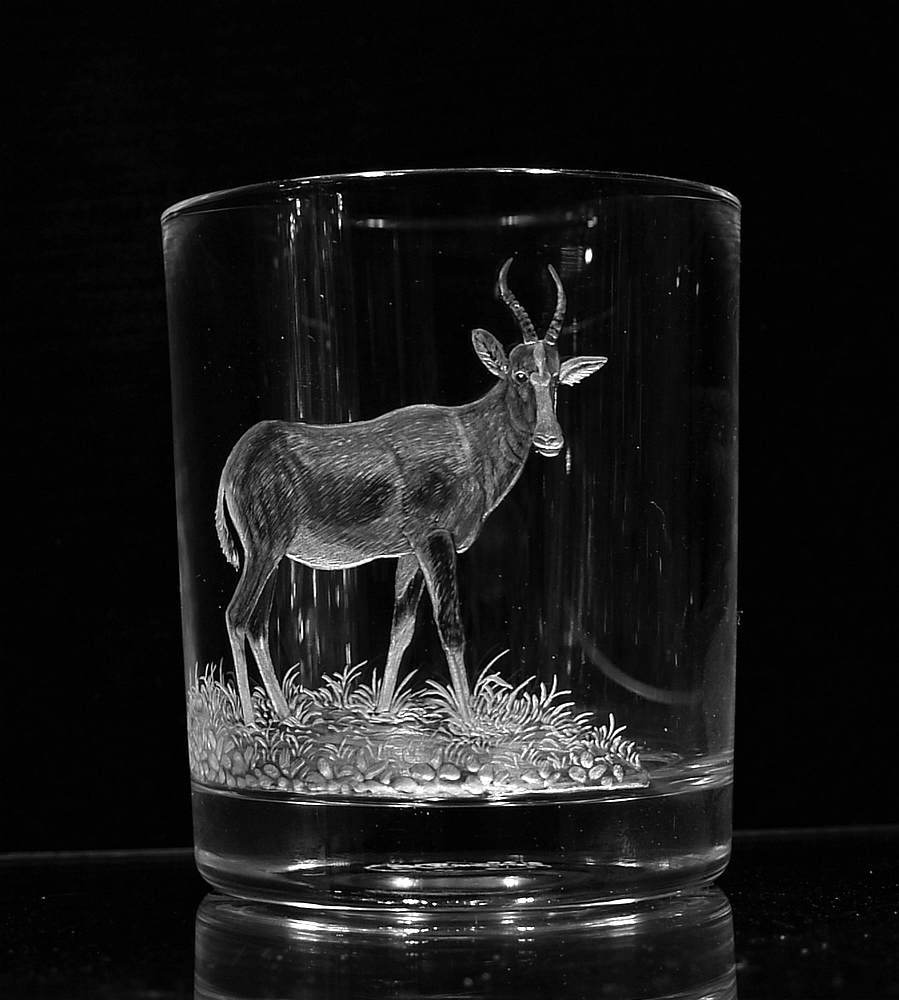 Crystal Glass Tumbler with Blesbok