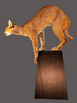 Caracal Pedestal Mount