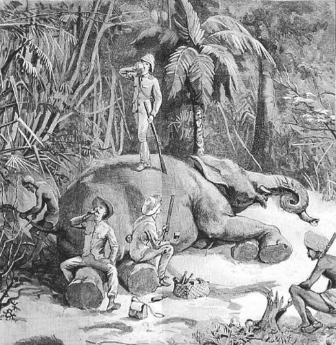 Elephant Hunting In Ceylon