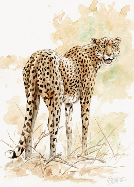 Cheetah Watercolor 1