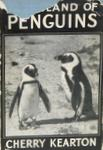 The Island Of Penguins