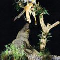 Crocodile, Leopard & Impala Full Mounts