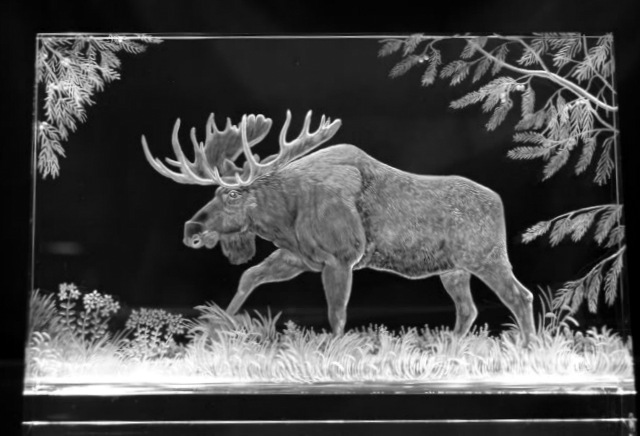 Crystal Plaque with Moose