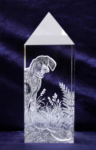 Optical Crystal Prism with German Pointer