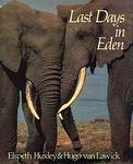 Last Days In Eden