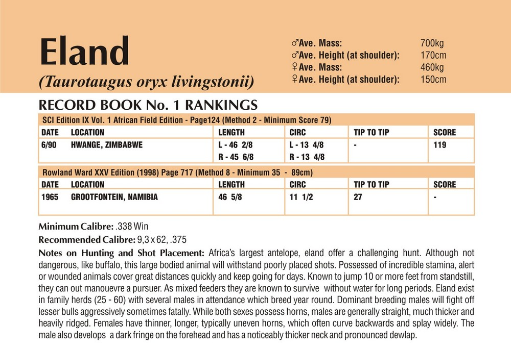 Eland Shot Placement