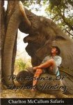 The Essence Of Elephant Hunting