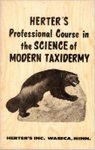 Herter's Professional Course In The Science Of Modern Taxidermy