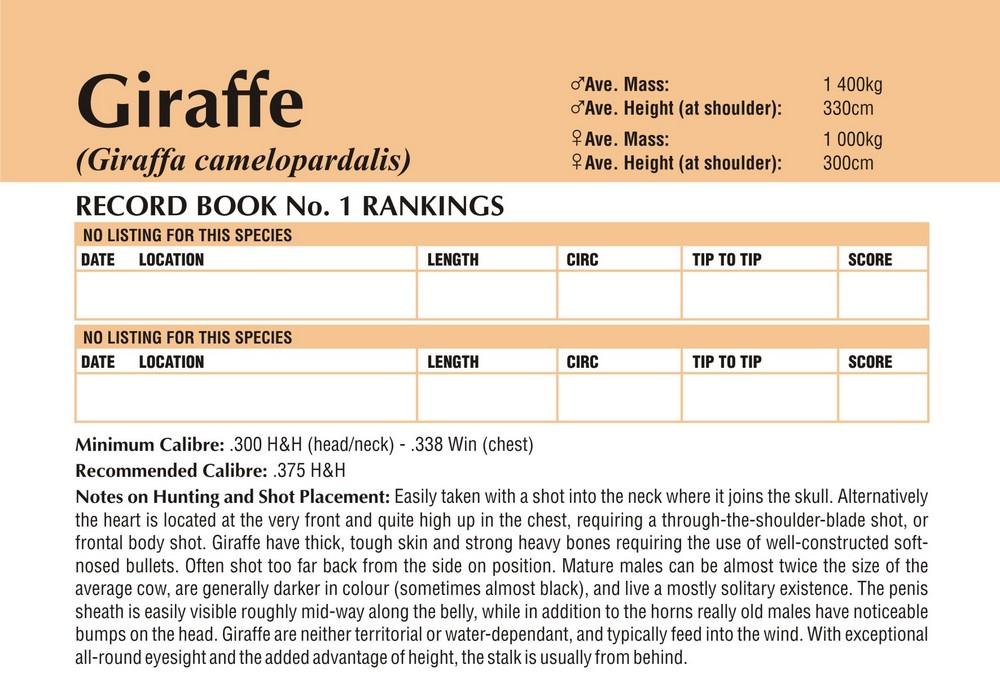 Giraffe Records