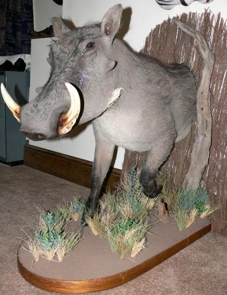 Warthog Half Mount