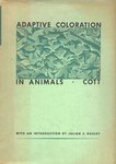 Adaptive Coloration In Animals