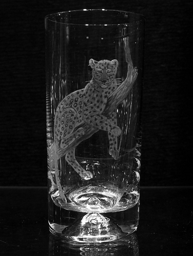 Highball Glass with Leopard