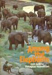 Among The Elephants