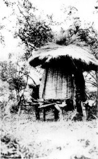 Photograph: A Native Granary