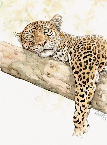 Leopard Watercolor 2