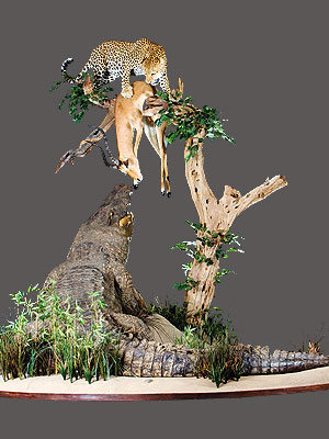 Leopard Full Mount Diorama