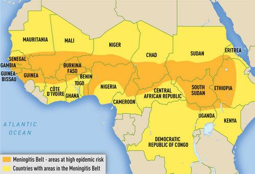 Meningitis In Africa Map
