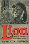 Lion: African Adventure With the King Of The Beasts