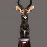 Nyala Bull Pedestal Mount