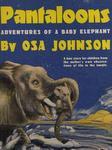 Pantaloons: Adventures Of A Baby Elephant