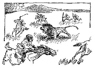 Drawing: Galloping Lions