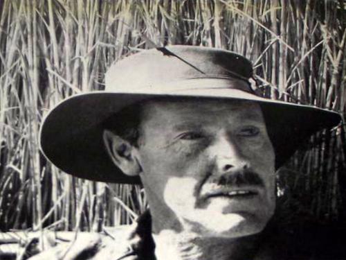 Paul L Potous