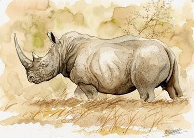 Rhino Watercolor 1