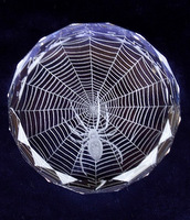 Paperweight with Spider