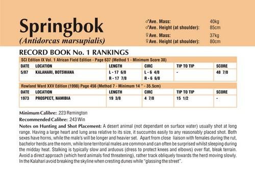 Springbok Records