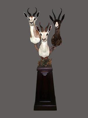 Springbok Pedestal Mount