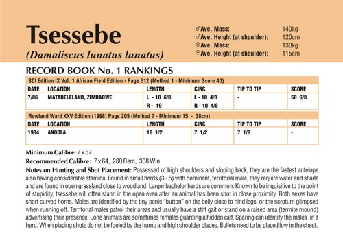 Tsessebe Records