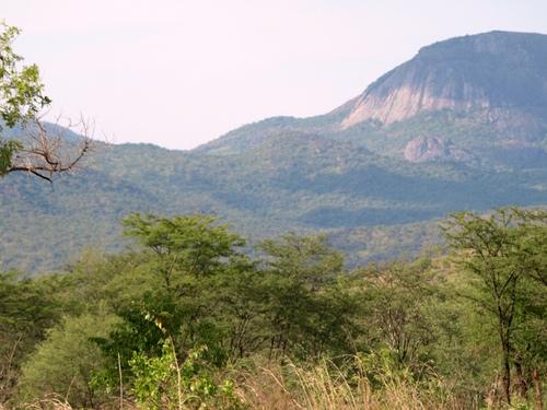 Uganda Exploratory Hunt Image