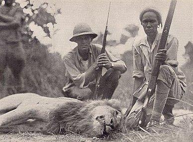 Hunters & Collectors Horn Of Plenty