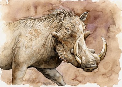 Warthog Watercolor