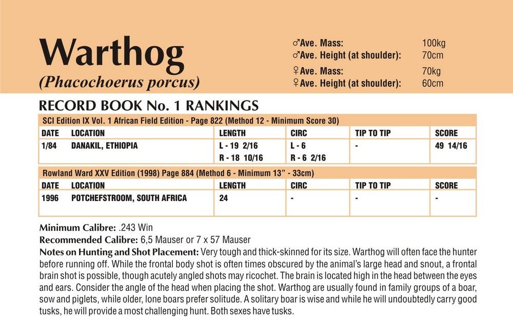 Warthog Records