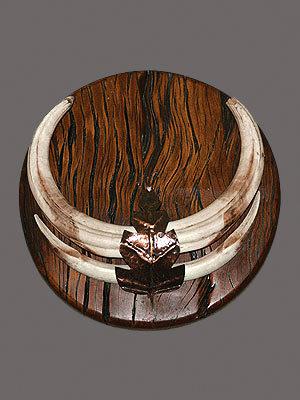 Warthog Tusk Mount