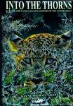 Into The Thorns: Hunting The Cattle-Killing Leopard Of The Marobo Hills