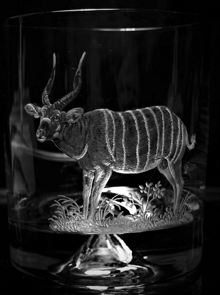 Crystal Glass Tumbler with Bongo