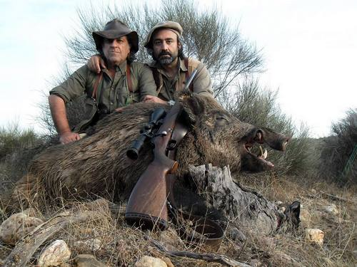 Portuguese Wild Boar