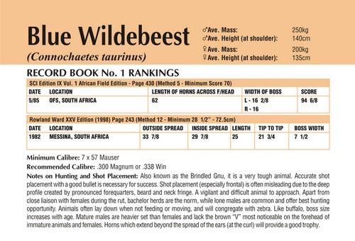 Wildebeest Records
