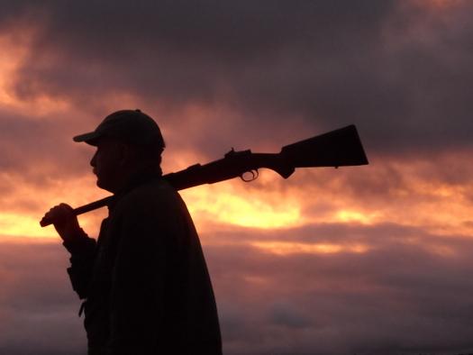 550 Magnum Sunset