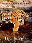 Tiger In Sight