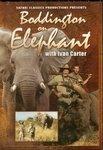 Boddington On Elephant