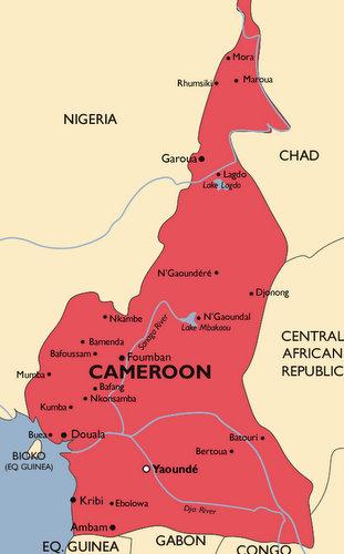 Cameroon Malaria Map