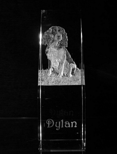 Crystal Book Spine with Spaniel